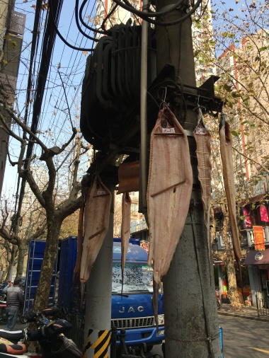 fish hanging on the street in the Former French Concession