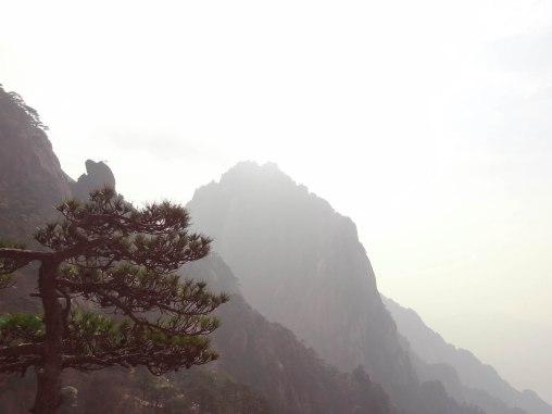 Huangshan-05241